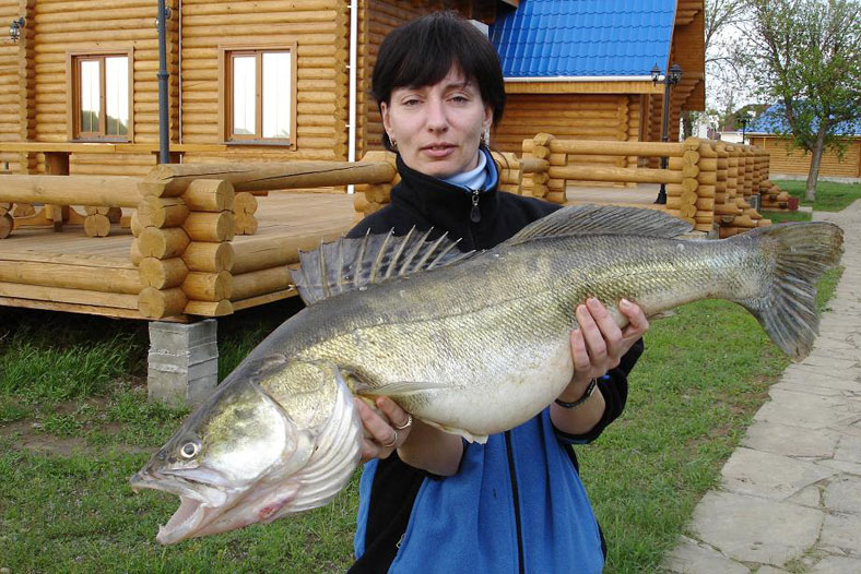 село заволжское рыбалка