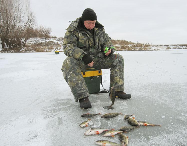 где ловить рыбу в саратове на волге